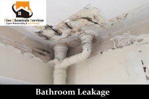 Bathroom Leakage
